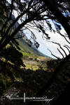 Through The Mountains.
