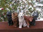 Wolf's Rain by Blitz32