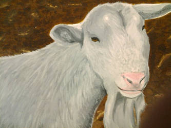 Goat by Jackofalltrades150