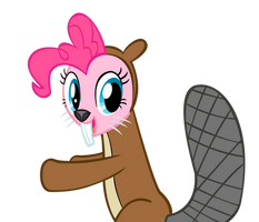Pinkie beaver by andy18