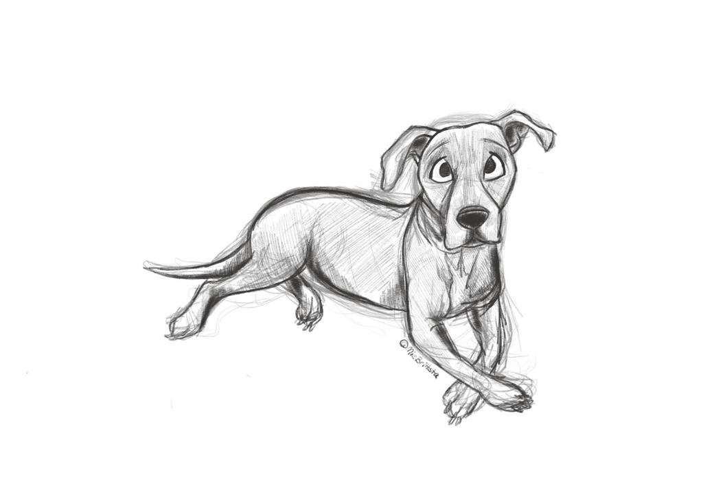 Pupper Dog by MizBrittsta