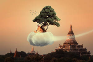 Monk in Peace