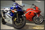 GSX-R and Daytona