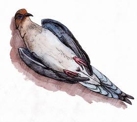 Dead bird (Inktober #3) by Sodachichan