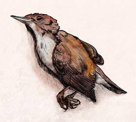 Dead bird (Inktober #6)