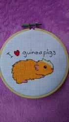 I love guinea pigs cross stitch