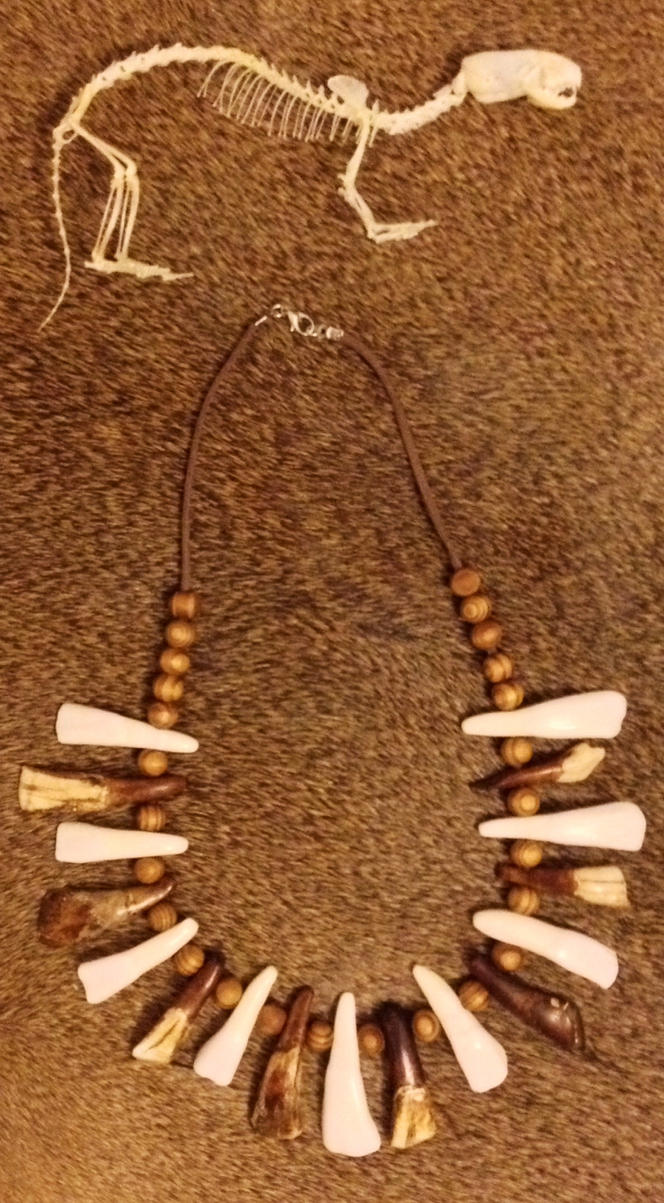 Weasel Skeleton and Necklace SOLD by YukiChana