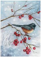 Winter Berries by teatimetomorrow