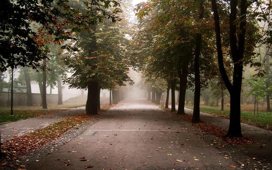Park 2 by nems2