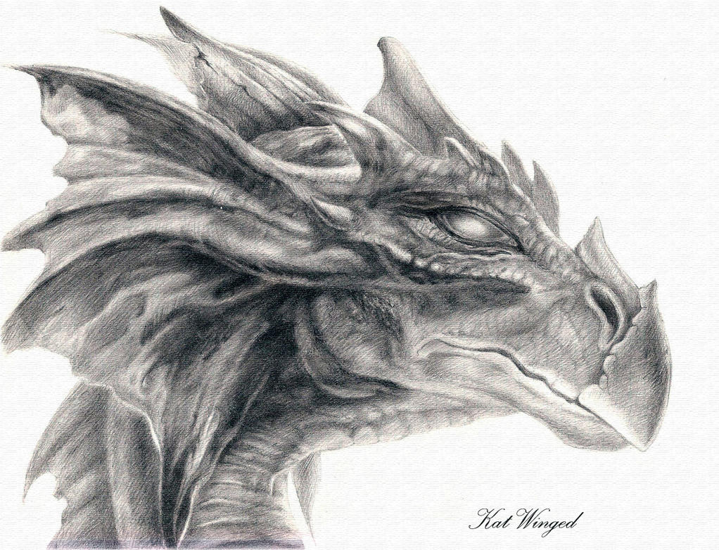Dragon head by kat winged on deviantart for Cool detailed drawings