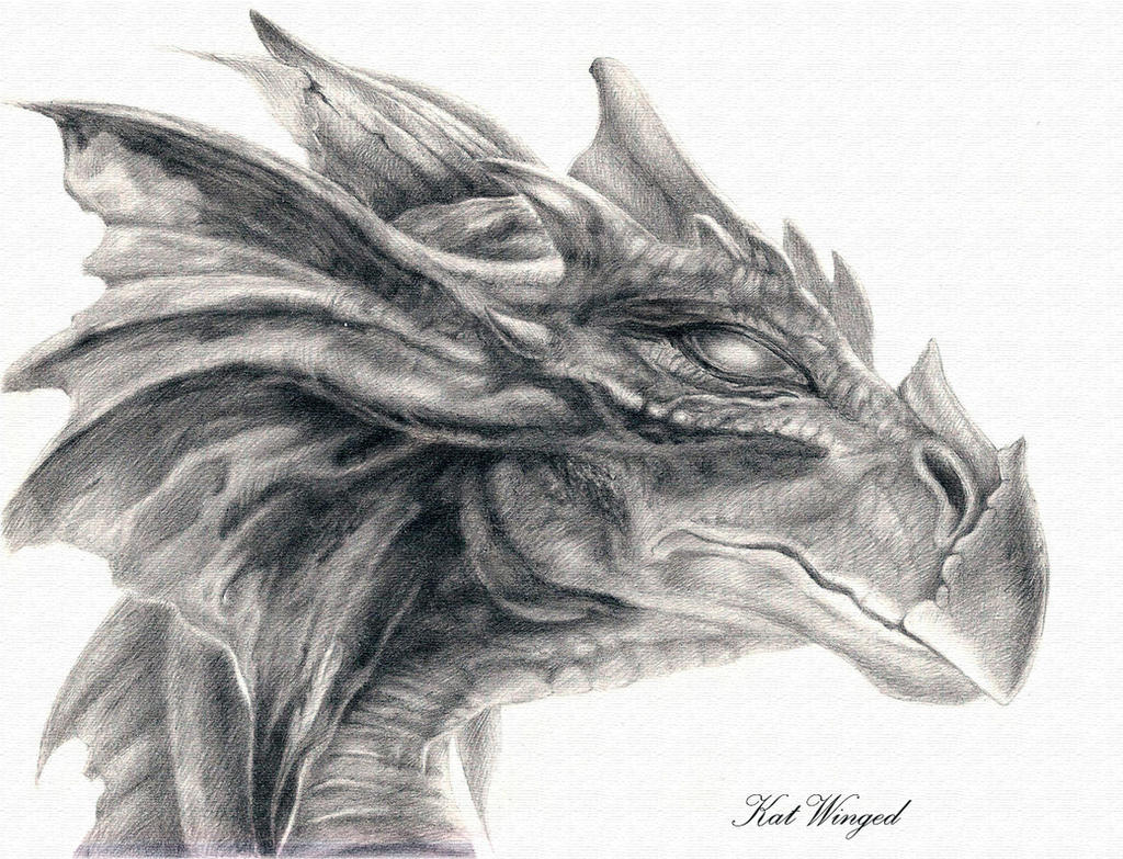 Dragon head by Kat-Winged on DeviantArt