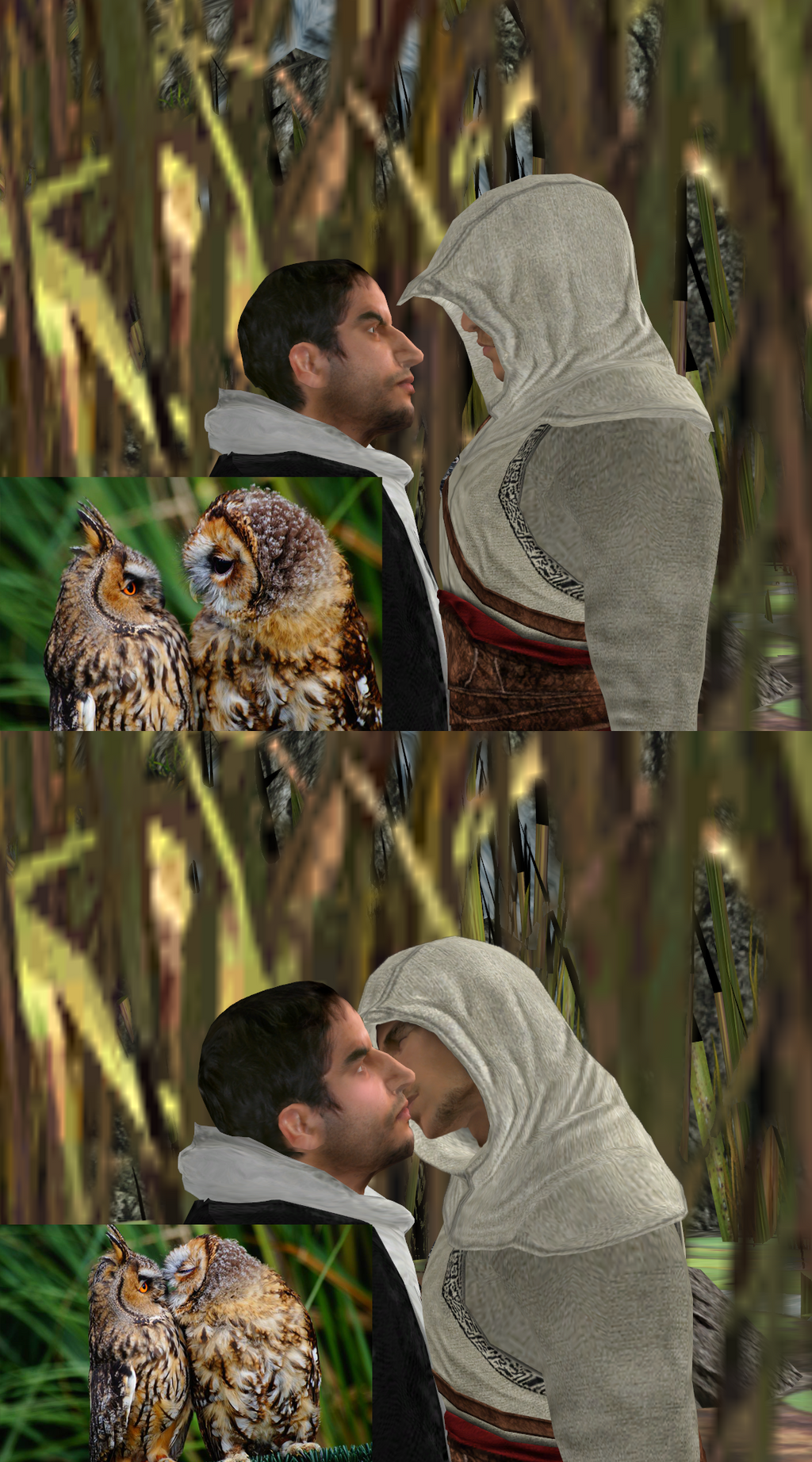Malik and Altair - Owls by lizathehedgehog