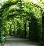 green way1