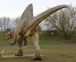 Dinosaur06
