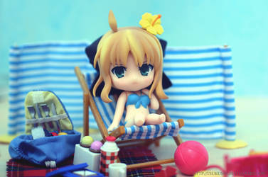 Summertime- Saber Lily