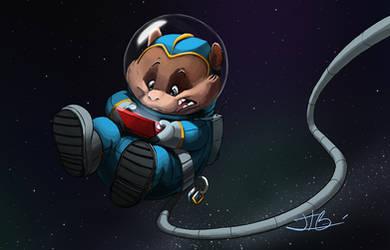 space hamtser