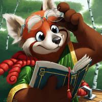 Reading Red Panda