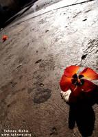 Flowers on the Moon by e-tahn