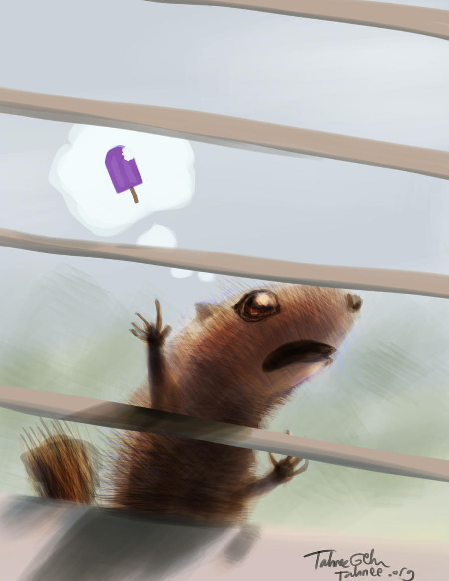 Window Squirrel by e-tahn