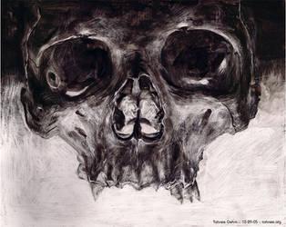 Skull, aka Mr Dead Head by e-tahn