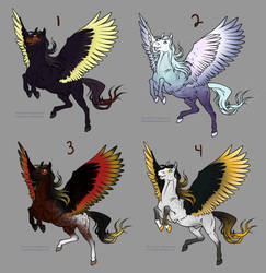 Pegasus Adoptables- 1 LEFT