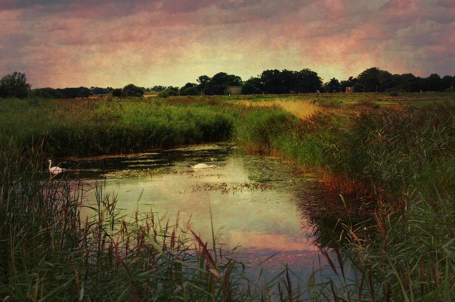 Beyond the river by VikklePickle