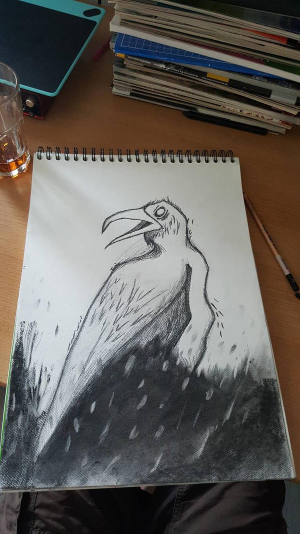 re-cartoonish bird by InkyCarp