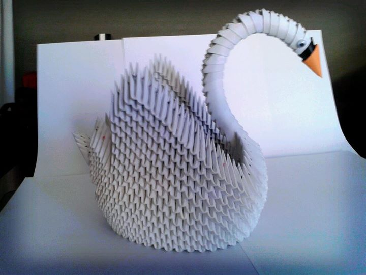 Origami 3d Swan Image collections - coloring pages adult