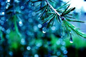 magic rain by NurNurIch