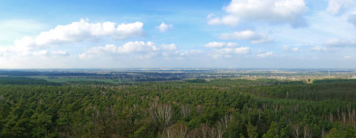 Panorama, Konin 2