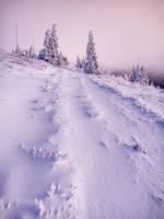 To The Ridge by wosicz