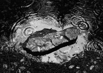 Rainy by wosicz