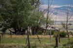 Pioneer Cabin (3)