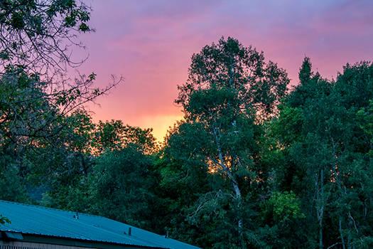 Eden Sunset (1)