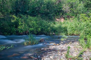 Ogden River (1)