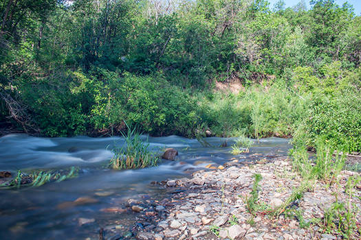 Ogden River (2)
