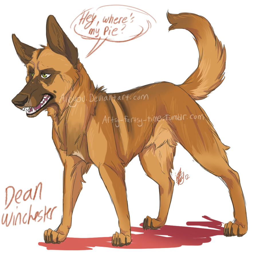 spn dogs: Dean by Aibyou