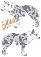Shilo Reference Sheet by ArtistMaz