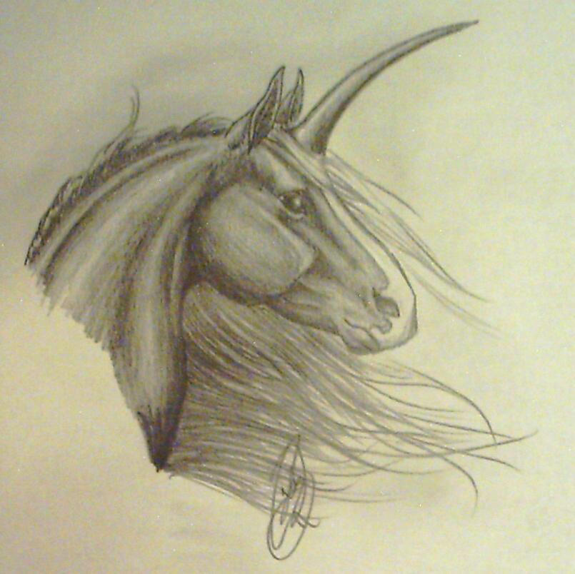 how to draw a unicorn with wings step by step