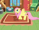 Fluttershy at home