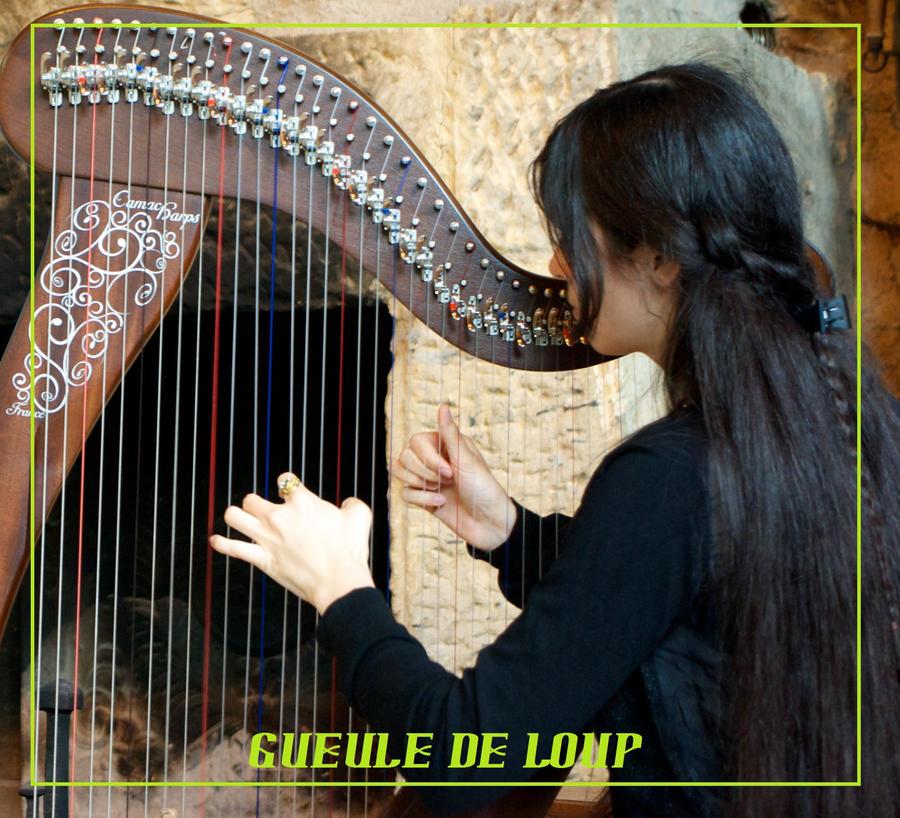 Gueule-de-Loup's Profile Picture