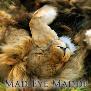 MadEyeMaddi's Profile Picture
