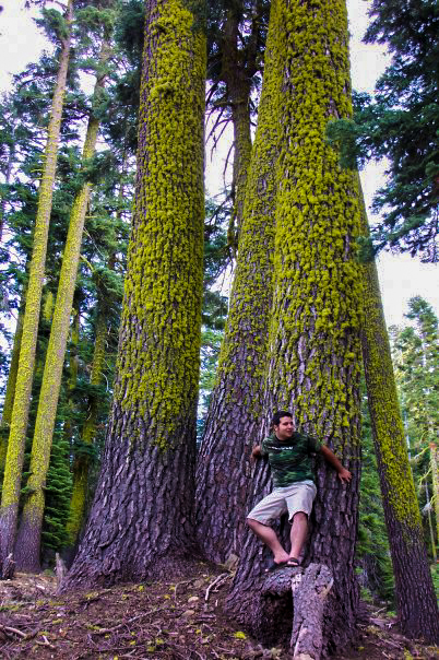Forest Ninja by heART-Werks