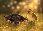 Puppy + Duckling