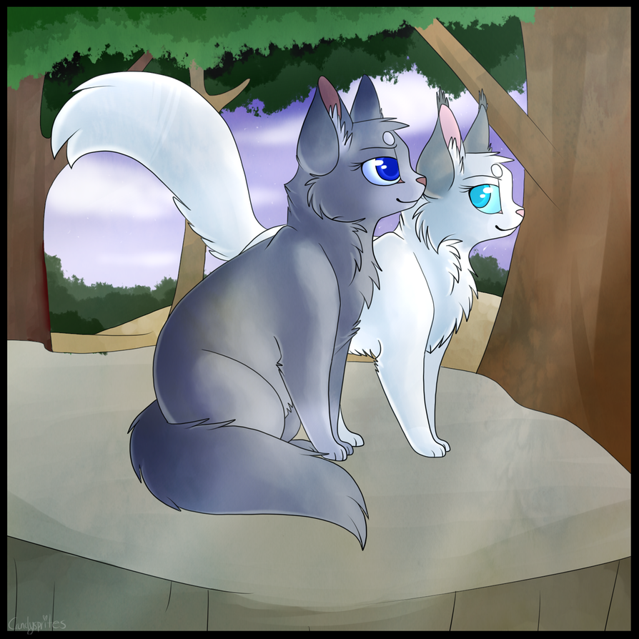 bluefur and snowfur by candysprites