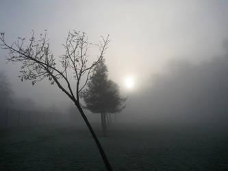 foggy morning by senritsuhiwatari
