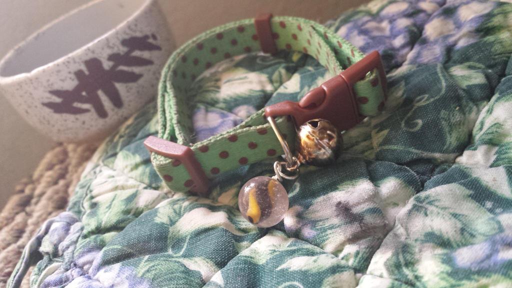 mawilite kitten collar charm by UwiGoncho