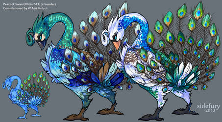 Peacock Swan SCC