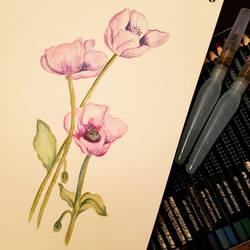 Flower watercolor