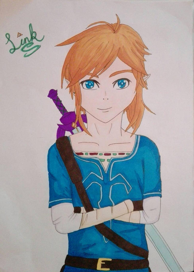 Breath Of The Wild Link by 4ntoniax3